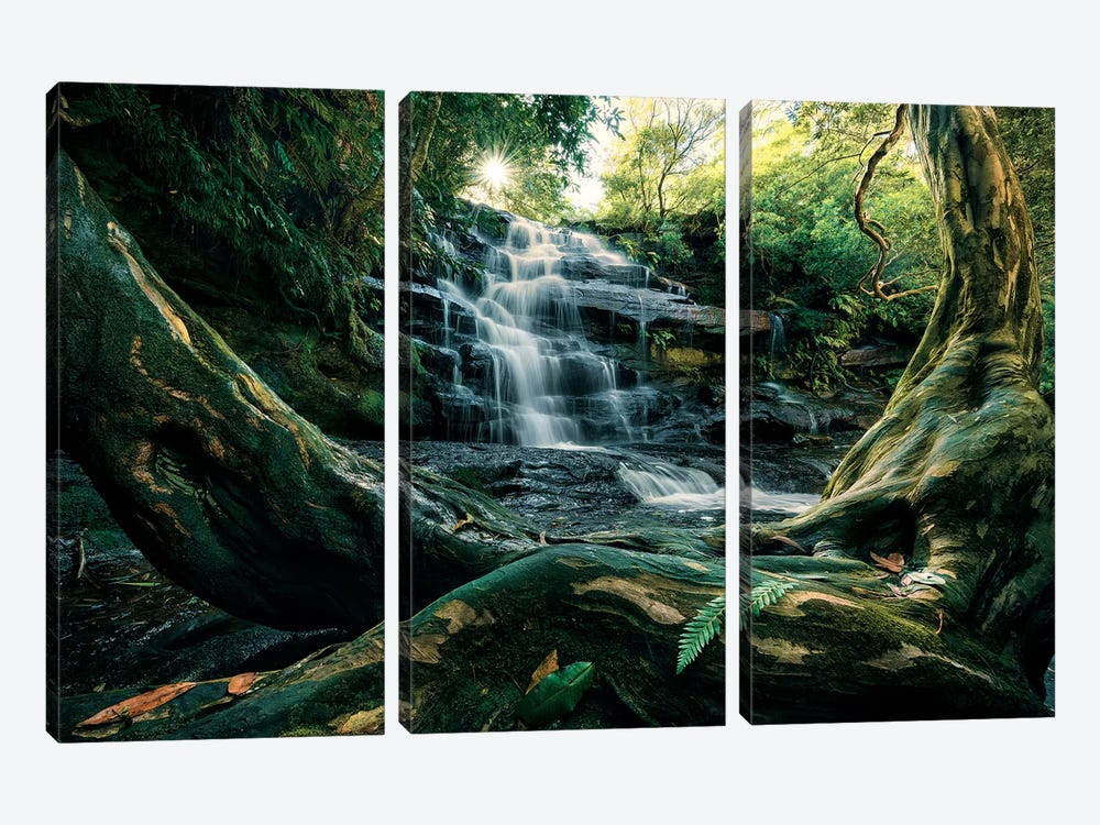 Australian Wonder by Stefan Hefele 3-piece Canvas Artwork