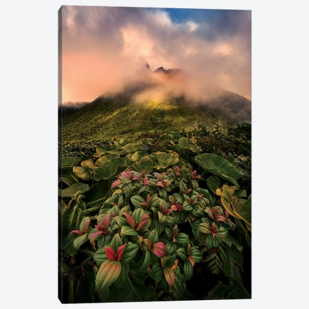 Caribbean Volcano Canvas Print #STF193} by Stefan Hefele Canvas Art