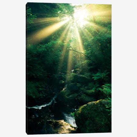 Divine, Vertical Canvas Print #STF203} by Stefan Hefele Canvas Art