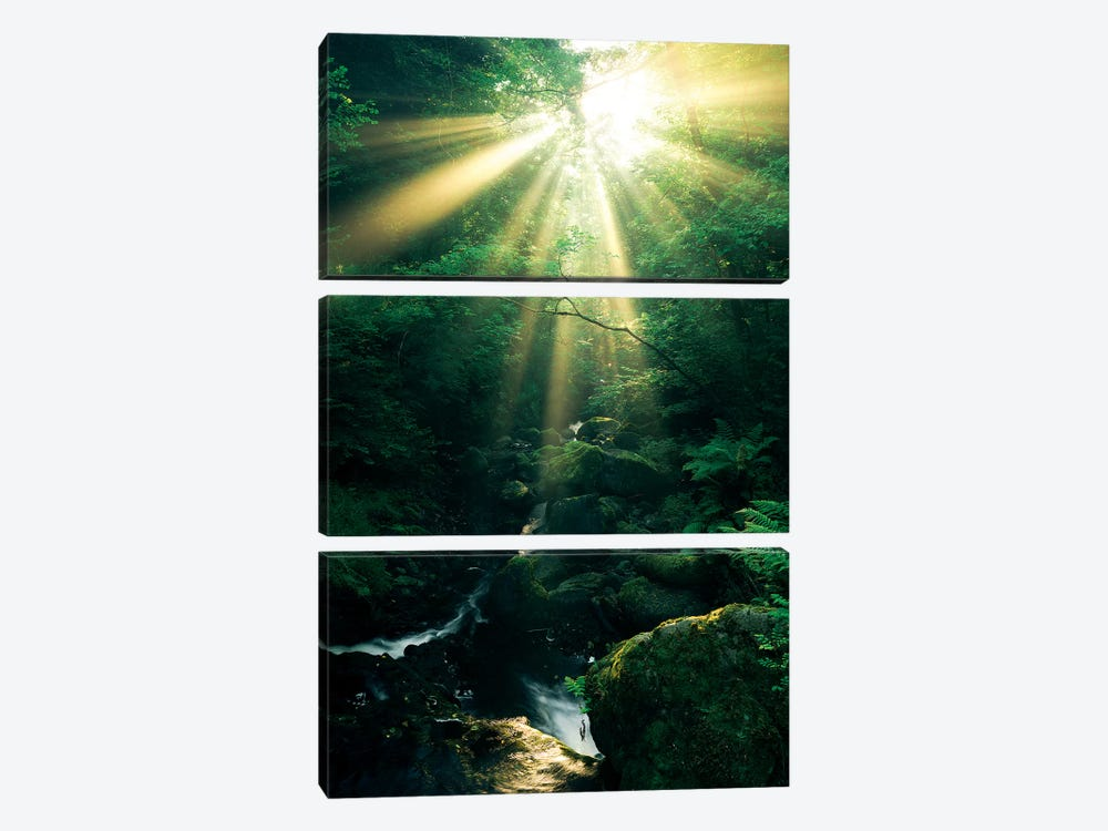 Divine, Vertical by Stefan Hefele 3-piece Canvas Print