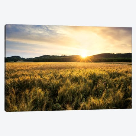 Golden Land Canvas Print #STF218} by Stefan Hefele Art Print