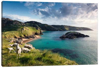 Breathtaking Ireland Canvas Art Print