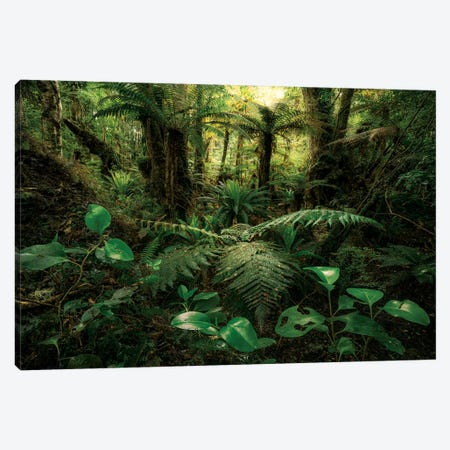 Gondwana Legends Canvas Print #STF220} by Stefan Hefele Canvas Artwork