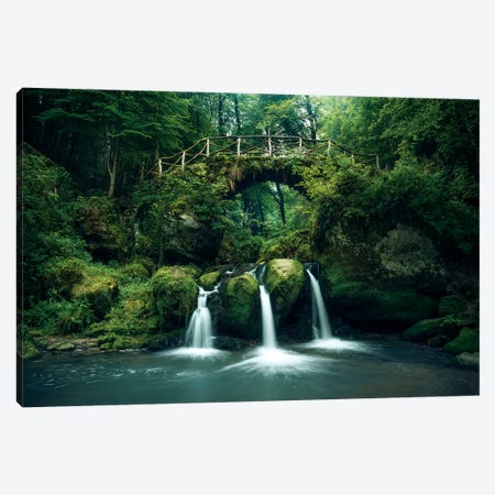 Green Heaven Canvas Print #STF222} by Stefan Hefele Canvas Artwork