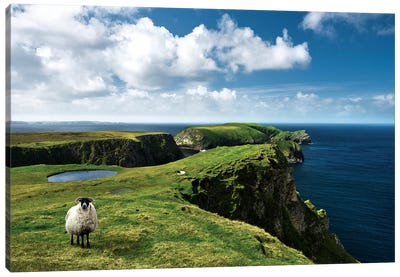 Green Ireland Canvas Art Print