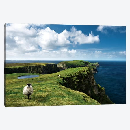 Green Ireland Canvas Print #STF223} by Stefan Hefele Canvas Wall Art