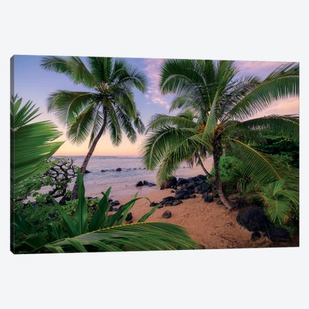 Hawaiian Dreams Canvas Print #STF226} by Stefan Hefele Art Print