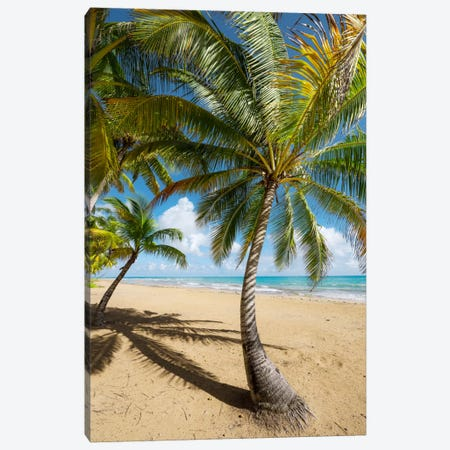 Caribbean Days - Puerto Rico III Canvas Print #STF23} by Stefan Hefele Canvas Print