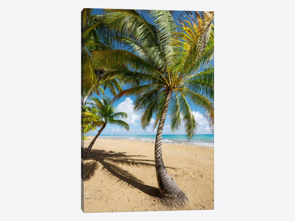 Caribbean Days - Puerto Rico III by Stefan Hefele 1-piece Canvas Print