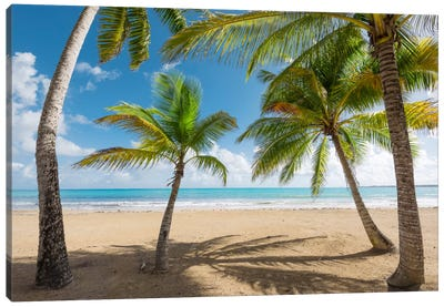 Caribbean Days - Puerto Rico IV Canvas Art Print