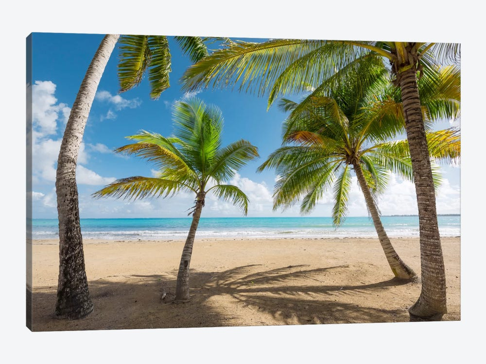 Caribbean Days - Puerto Rico IV 1-piece Canvas Artwork