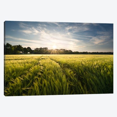 Charmed Country Canvas Print #STF26} by Stefan Hefele Canvas Art