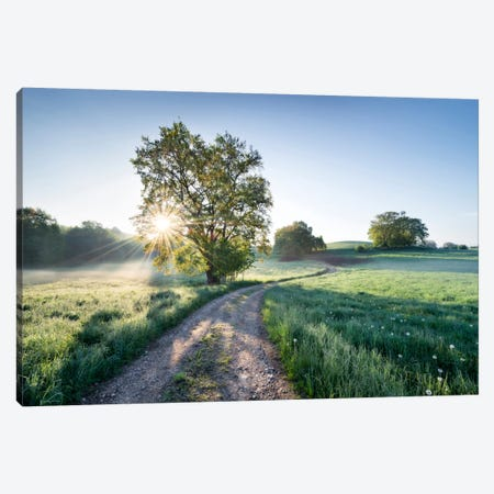 A New Day In Paradise Canvas Print #STF2} by Stefan Hefele Canvas Art