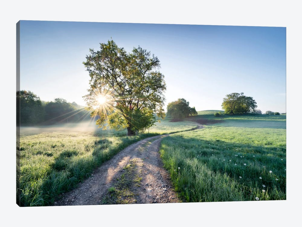 A New Day In Paradise by Stefan Hefele 1-piece Canvas Print