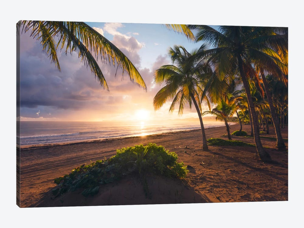 Coco Beach, Puerto Rico by Stefan Hefele 1-piece Canvas Print