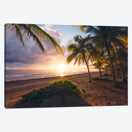 Coco Beach, Puerto Rico Canvas Print #STF30} by Stefan Hefele Canvas Artwork