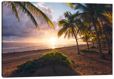 Coco Beach, Puerto Rico Canvas Art Print