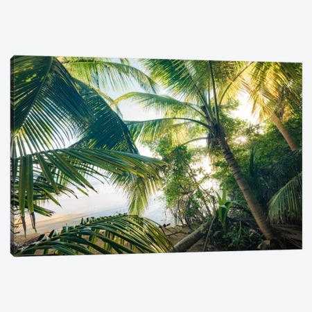 Coconut Jungle Canvas Print #STF31} by Stefan Hefele Canvas Art