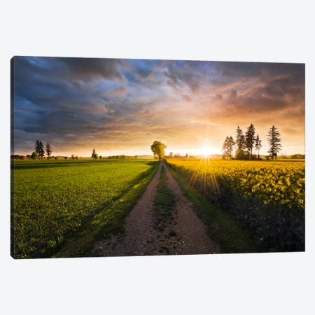 Country Music Canvas Print #STF33} by Stefan Hefele Canvas Artwork