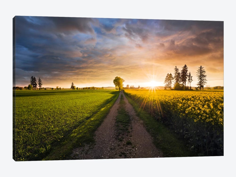 Country Music by Stefan Hefele 1-piece Canvas Art