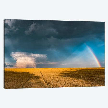 Creation Canvas Print #STF36} by Stefan Hefele Art Print