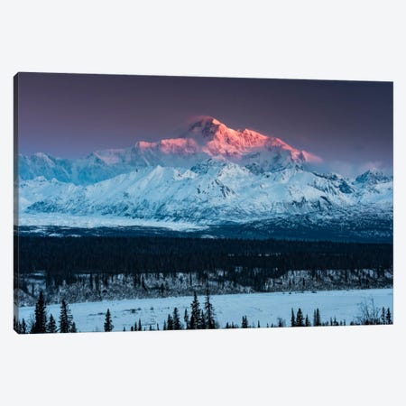 Denali Glow Canvas Print #STF42} by Stefan Hefele Canvas Art Print