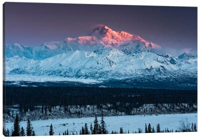 Denali Glow Canvas Art Print