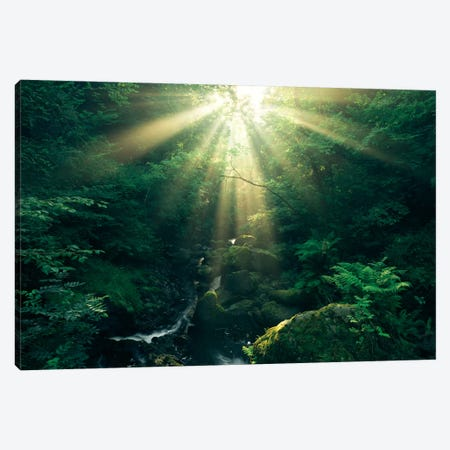 Divine Canvas Print #STF43} by Stefan Hefele Canvas Print