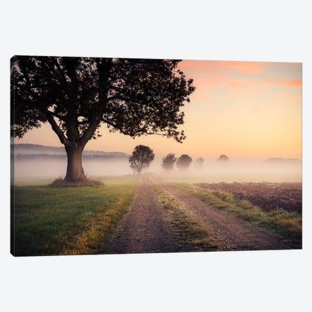 Fog Path Canvas Print #STF60} by Stefan Hefele Canvas Art Print