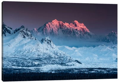 Game Of Thrones - Alaska Canvas Art Print