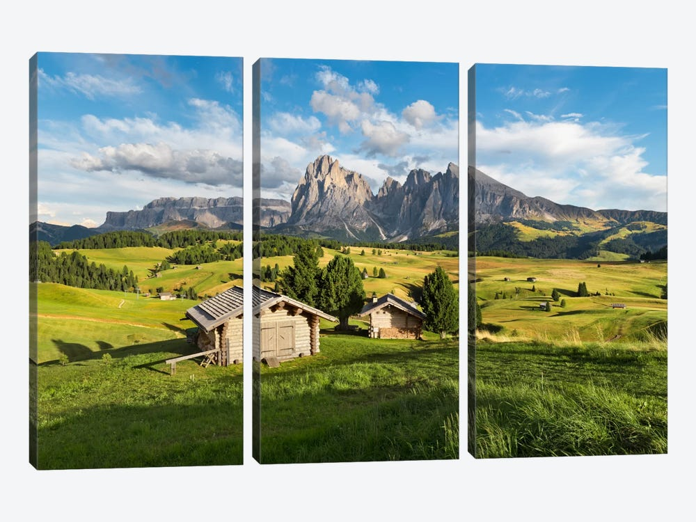 Alpe di Siusi, Alpine Meadow In Italy by Stefan Hefele 3-piece Art Print