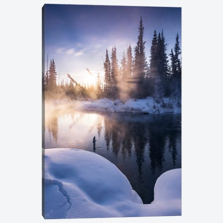 Gold Fog Canvas Print #STF73} by Stefan Hefele Canvas Artwork