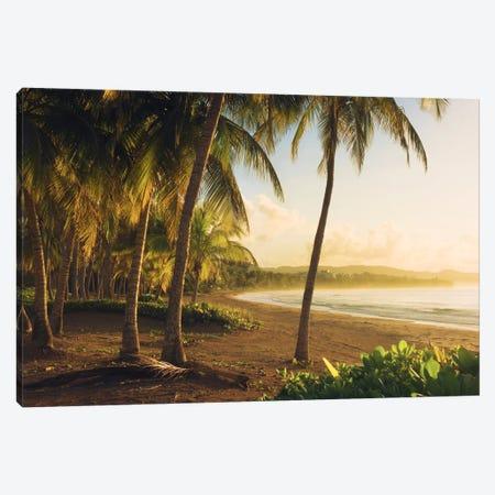 Golden Lands - Puerto Rico Canvas Print #STF77} by Stefan Hefele Canvas Art Print