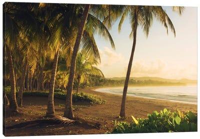 Golden Lands - Puerto Rico Canvas Art Print