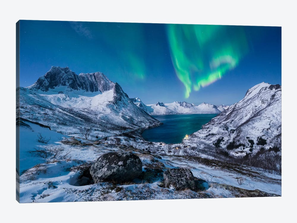 I LOVE Norway 1-piece Art Print
