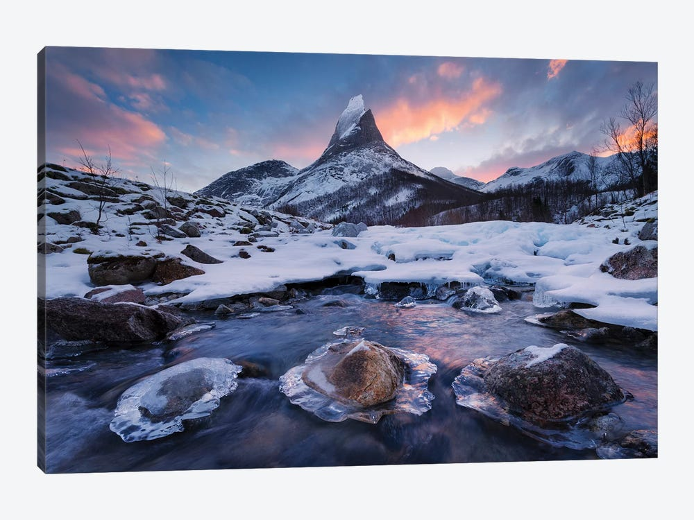 King Of The North by Stefan Hefele 1-piece Canvas Wall Art