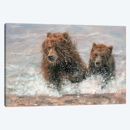 The Bears Are Coming Canvas Print #STG103} by David Stribbling Canvas Wall Art