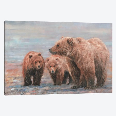 Three Bears Canvas Print #STG104} by David Stribbling Canvas Print