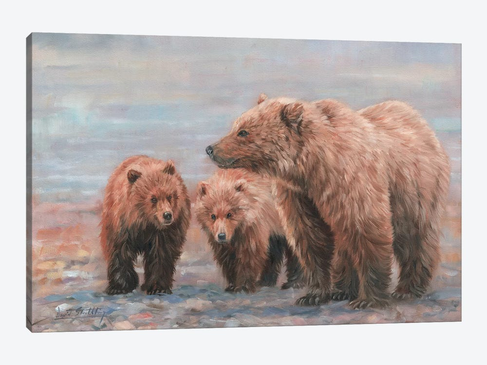 Three Bears by David Stribbling 1-piece Canvas Wall Art