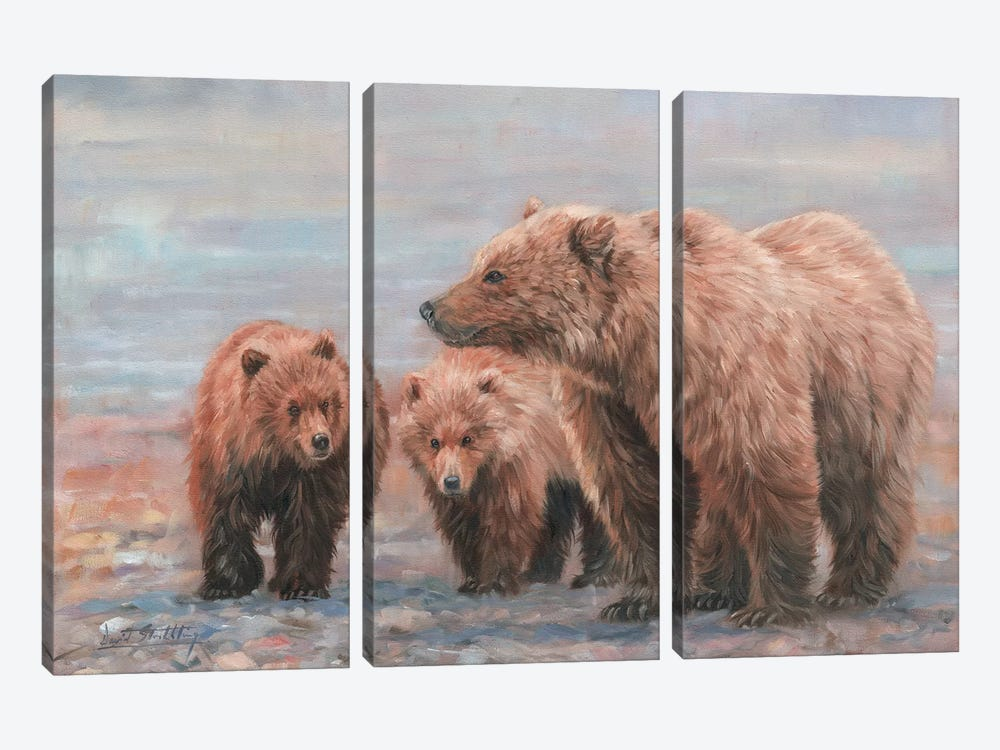 Three Bears by David Stribbling 3-piece Canvas Wall Art