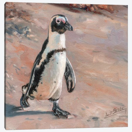 Beach Stroll Canvas Print #STG11} by David Stribbling Art Print