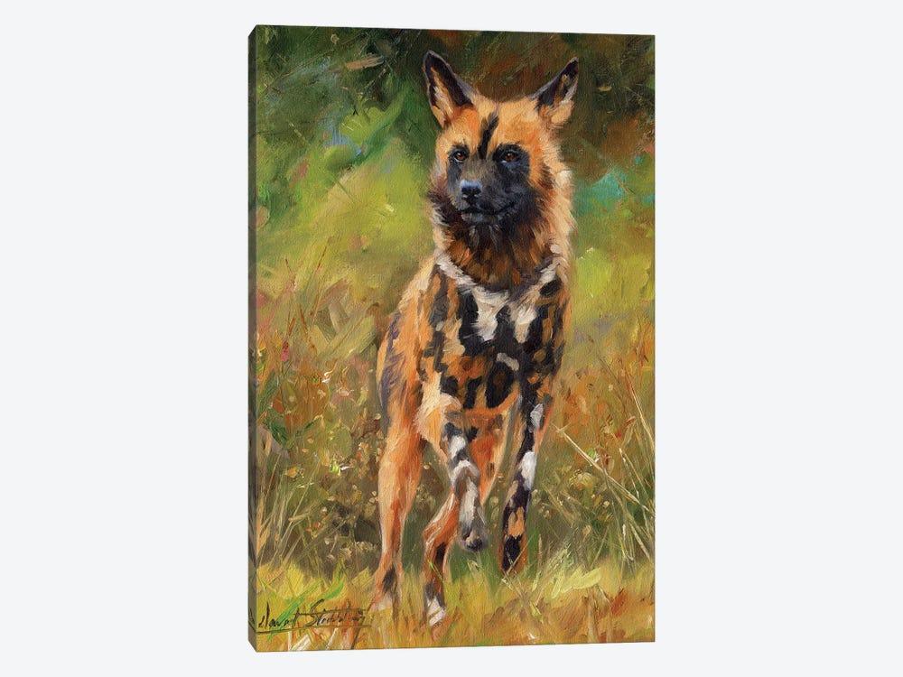 African Wild Dog by David Stribbling 1-piece Art Print