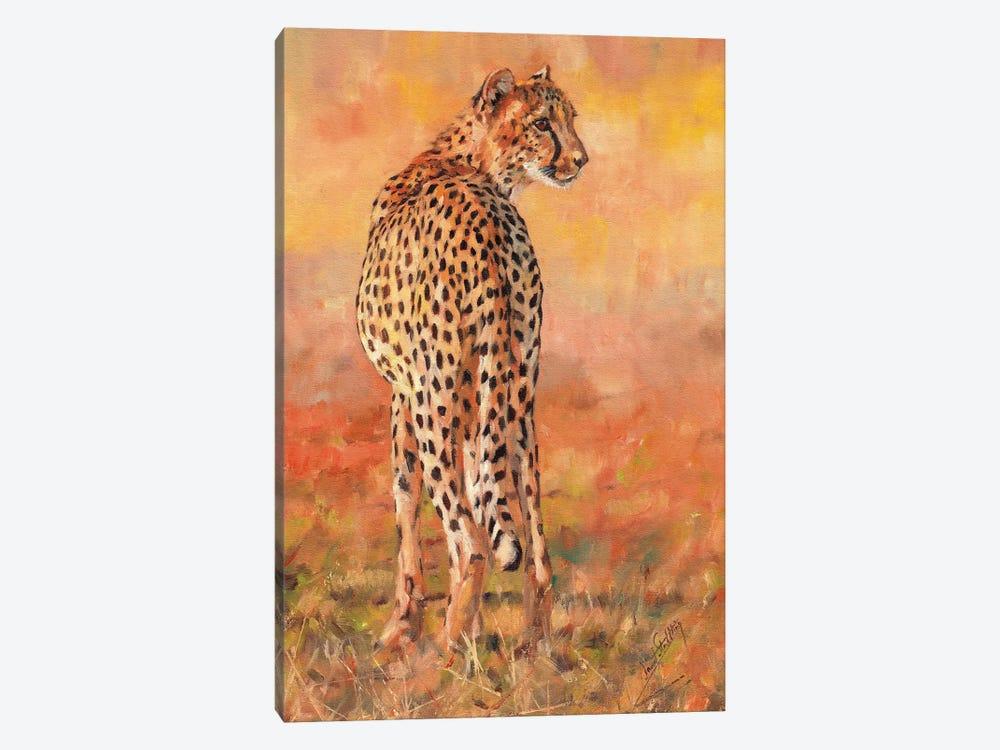 Cheetah Sunset by David Stribbling 1-piece Canvas Wall Art