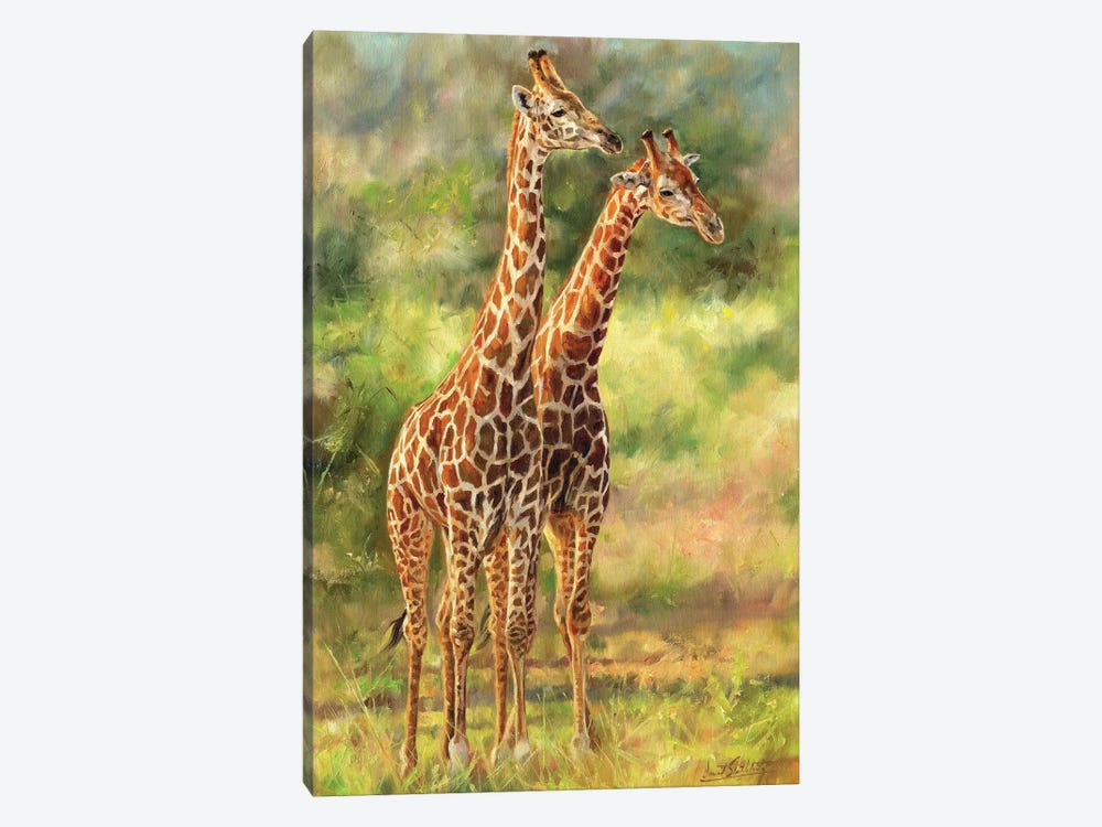 Giraffes by David Stribbling 1-piece Canvas Art