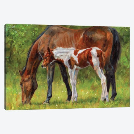 Horse And Foal 3-Piece Canvas #STG149} by David Stribbling Canvas Art