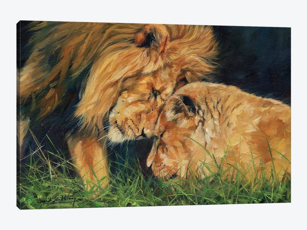 Lion Love by David Stribbling 1-piece Canvas Artwork
