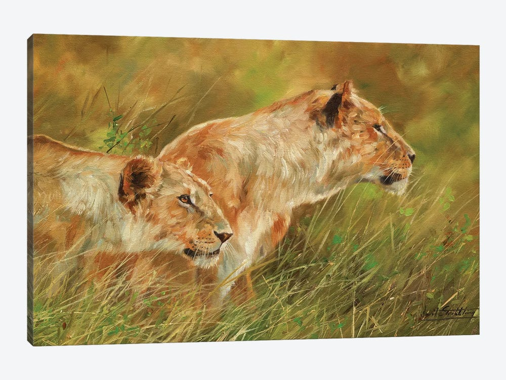 Stalking Lions by David Stribbling 1-piece Canvas Wall Art
