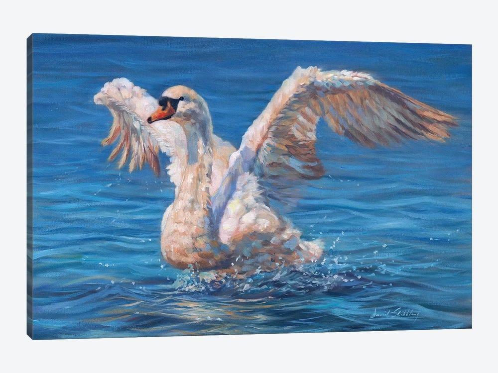 Swan by David Stribbling 1-piece Art Print