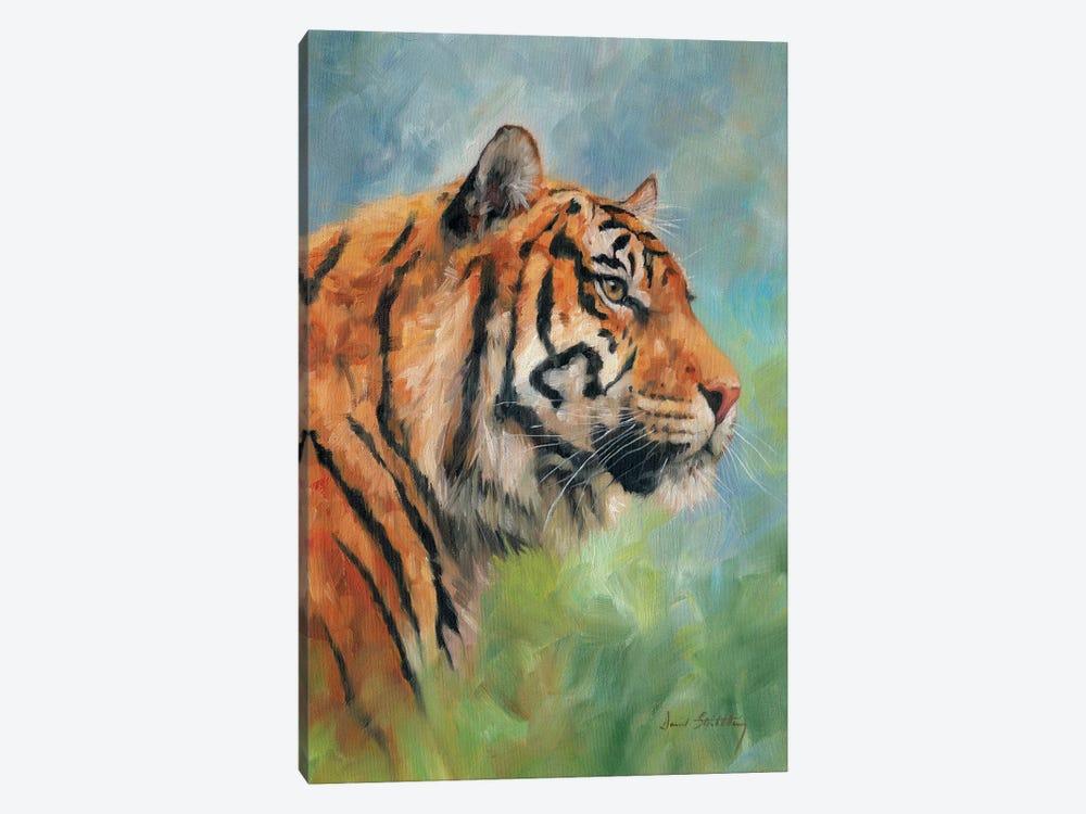 Tiger Study by David Stribbling 1-piece Canvas Artwork