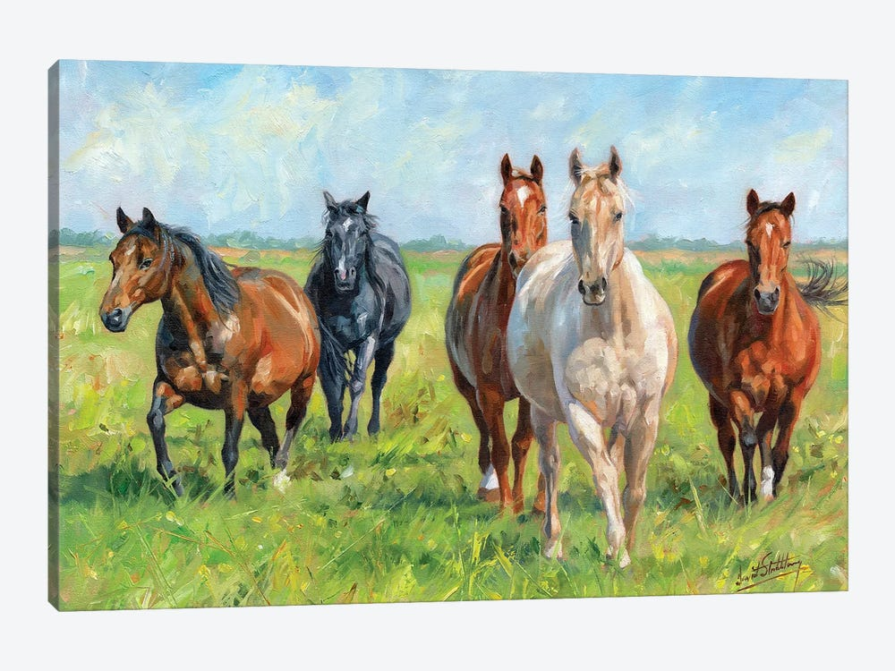 Wild Horses by David Stribbling 1-piece Canvas Art